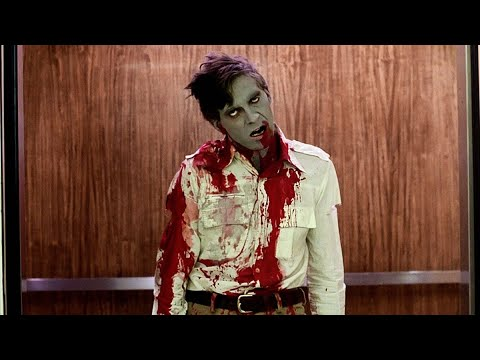 Dawn Of The Dead:Zombie Flyboy