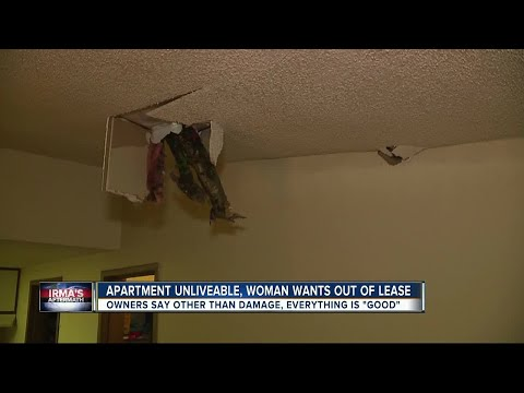 Apartment complex: 'Everything is good' even though a tree crashed through tenants ceiling
