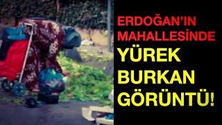 """""""ÇEK MEMLEKETİN HALİNİ TAYYİP'E GÖNDER"""""""