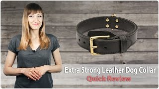 Extra Strong Leather Dog Collar For Large And Medium Breeds - Quick Review