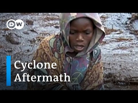Cyclone Idai: The worst humanitarian crisis in Mozambique's history   DW News