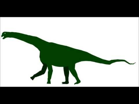 PPBA Camarasaurus vs Saurophaganax
