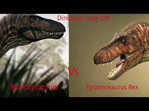 Dinosaur Face off Nanotyrannus vs Tyrannosaurus Rex