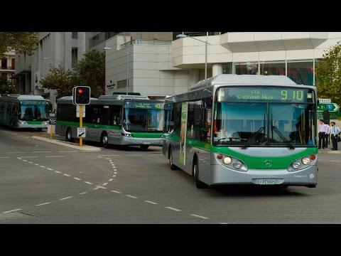 Buses in Perth city during peak hour - Transperth