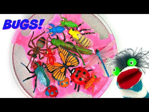 Learn Colors for Children with Insect Names and Toy Bugs Collection for Kids