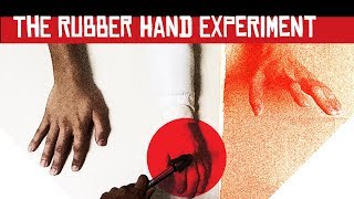 Fake hand, real fear. Stirr tries the Rubber Hand Experiment!