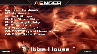 Vengeance Producer Suite - Avenger Expansion Demo: Ibiza House 1