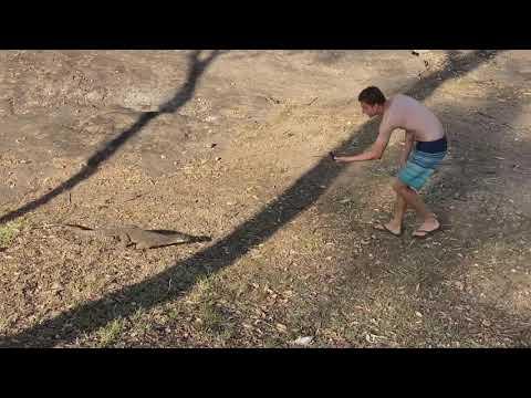 Guy Runs Away From Reptile