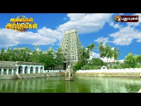 Mayuranathaswami Temple, Mayiladuthurai | Aalayangal Arputhangal | 21/07/2016 | Puthuyugam TV