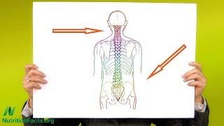 Švestky proti osteoporóze