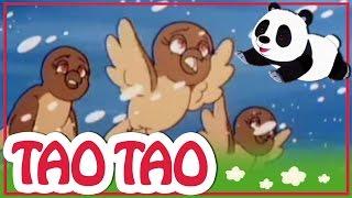 Tao Tao - 17 - שלושה החזירים הקטנים