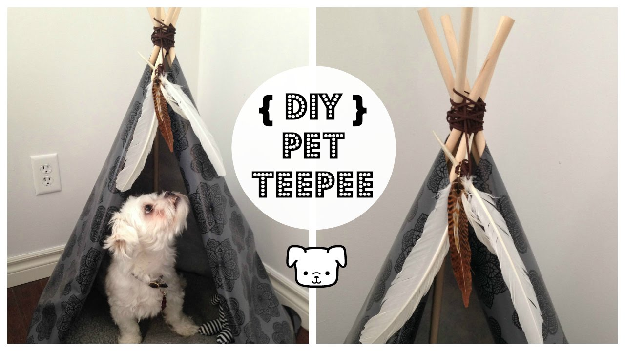 DIY DoG TEEPEE YouTube