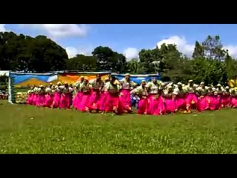 Halad Festival 2011: Grand Champion Grupong Sayap of NDMHS Final Showdown