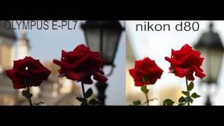 Системная камера OLIMPUS E-PL7 против зеркалки NIKON D80
