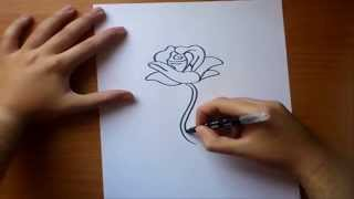Como dibujar una rosa paso a paso | How to draw a rose