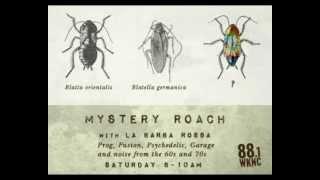 Mystery Roach: Breakfast