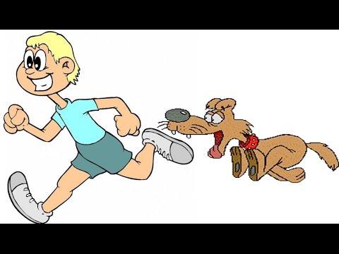 Вопрос: Что делать если вас окружила свора собак?