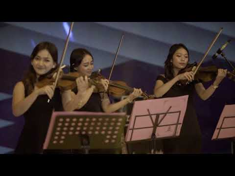 Love Me Like You Do (Ellie Goulding) Violin Cover By Aurora