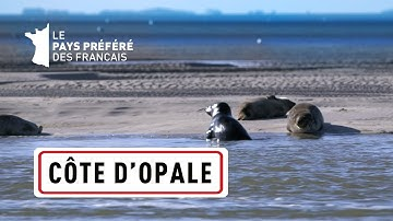 La Côte d'Opale, des Deux-Caps aux marais de Saint-Omer - Les 100 lieux qu'il faut voir
