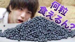 【限界】ぼくってブルーベリーって何粒食えるの? thumbnail