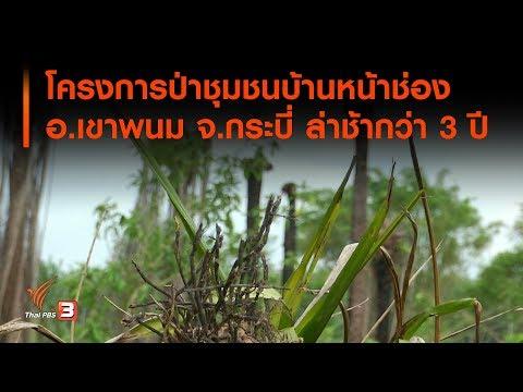 โครงการป่าชุมชนบ้านหน้าช่อง อ เขาพนม จ กระบี่ ล่าช้ากว่า 3 ปี - วันที่ 06 Aug 2019