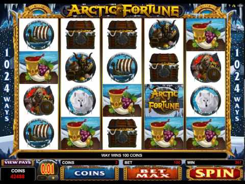 Arctic Fortune Casino 5 Reel