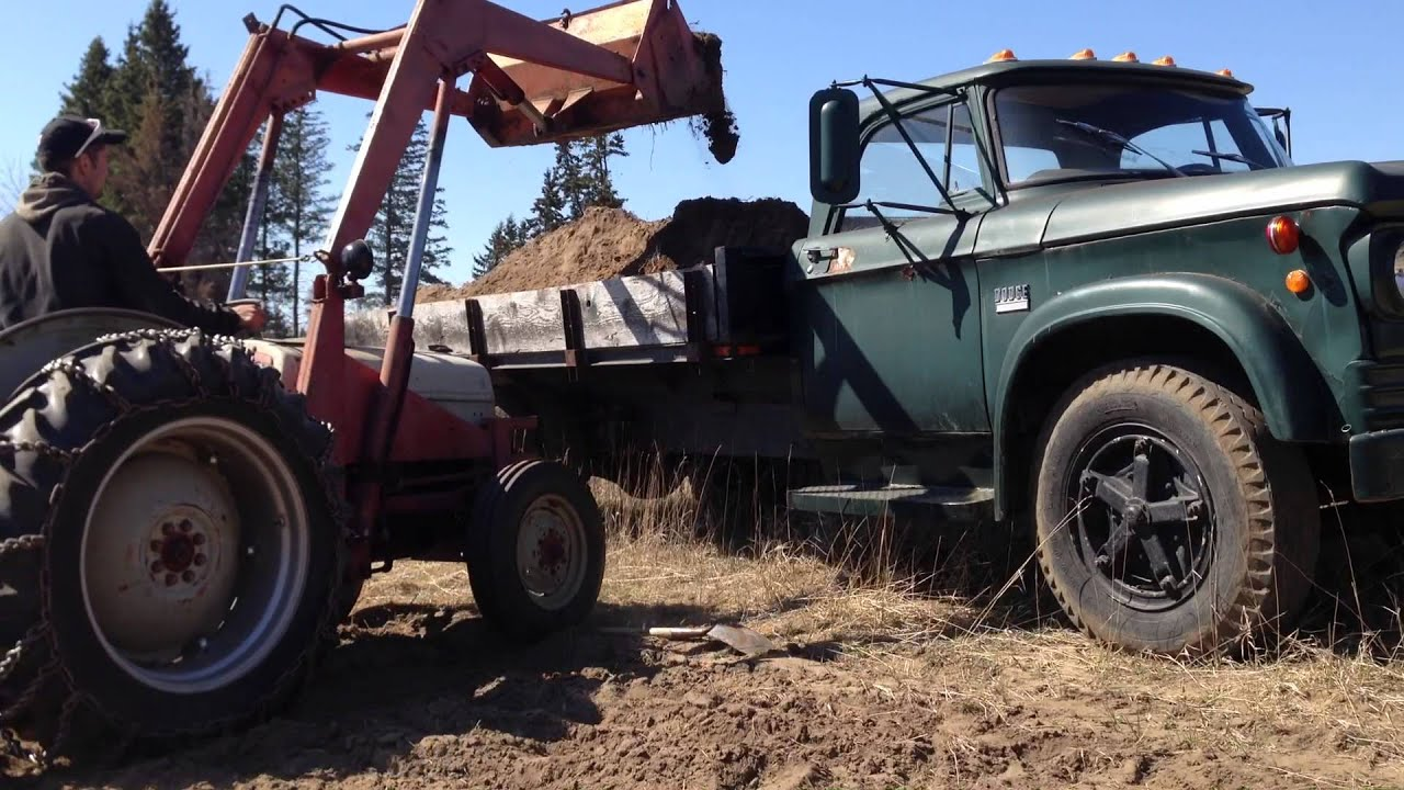 Ford 8n Loading 1969 Dodge D 500 Dump Truck Youtube 1954