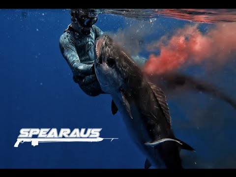 Beers & Spears Ep 2 - Spearfishing The Coral Sea | Reel Deep Charters