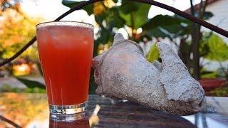 Blood Orange Screwdriver Cooler Cocktail Recipe Video