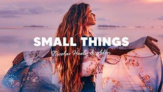 Nicolas Haelg & Adon - Small Things