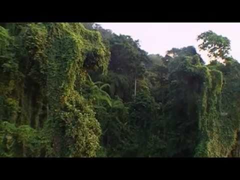 """Kalapani Black Water""  The first Expedition to Andaman & Nicobar Islands- India"