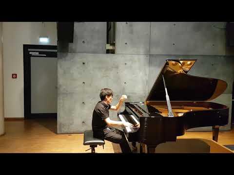M. Ravel Miroirs (Noctuelles, Une barque sur l'océan, Alborada del gracioso)(22. 12. 2017 Würzburg)