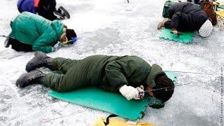 ПОИСК РЫБЫ(как найти рыбу зимой - простой способ., 2016-01-03T08:51:47.000Z)