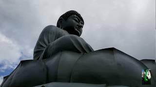 【大仏】日の出・宝光寺の「鹿野大仏」