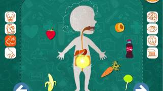 Это мое тело  Анатомия для детей