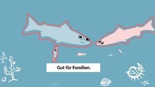 Beamte und Private Krankenversicherung: Passt wie Fisch zu Brötchen