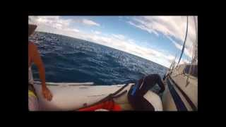 Sailing, Spearing Swain Reefs - Long