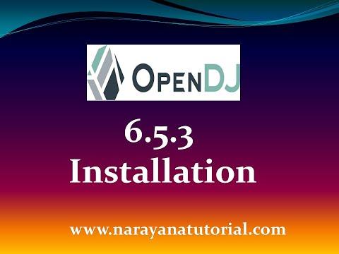 ForgeRock OpenDJ 6 5 3 Installation