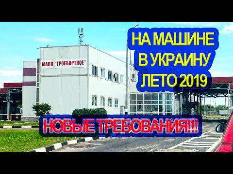 В Украину на машине с животными. Лето 2019. Новые требования