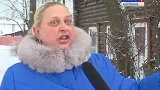 Жители домов на улице Маяковского в Костроме жалуются на агрессивную соседскую собаку