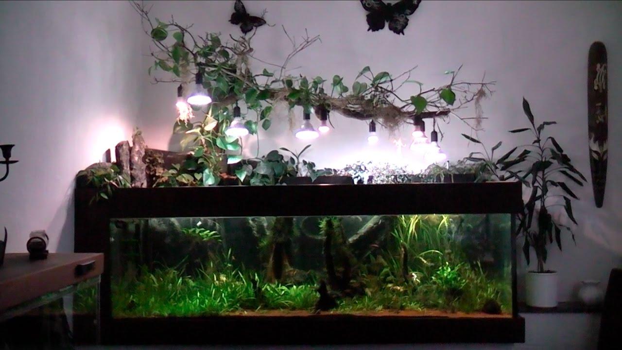 1200l Aquarium, Südamerika Becken Mit Ledbeleuchtung Mit