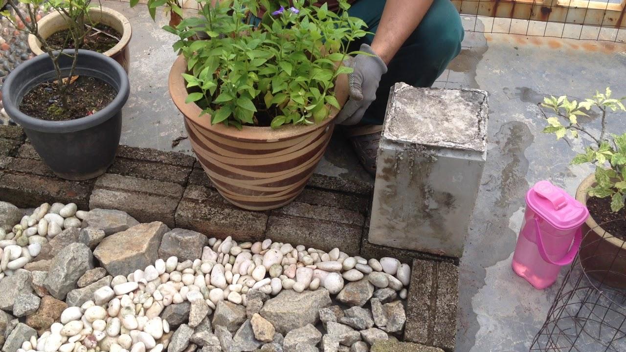 Senireka Landskap Membina Taman Mini Landskap Di Ruang Porch Kediaman Youtube