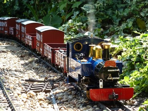 G Scale Live Steam Garden Railway Fun