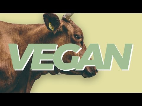 Here's Why We Need To Rethink Veganism