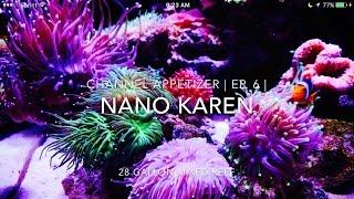 Channel Appetizer | Ep. 6 | Nano Karen's 28g Mixed reef