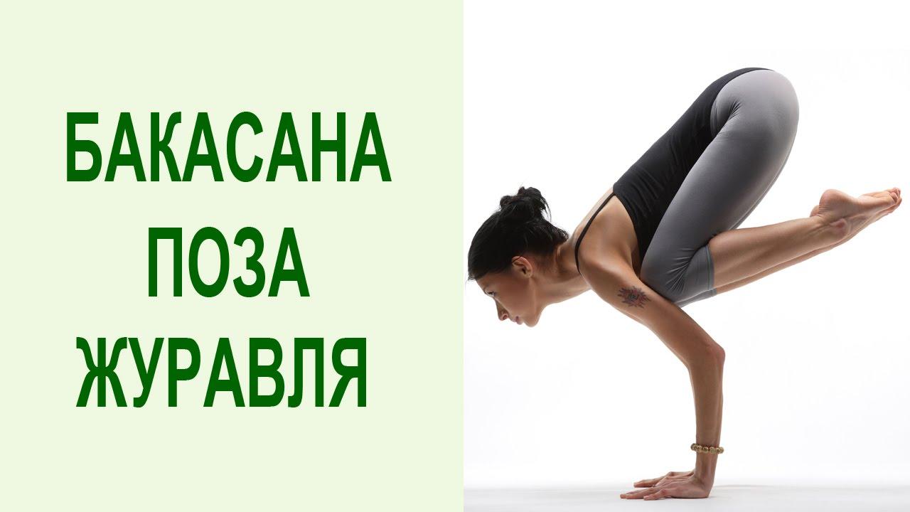 Видео уроки Открытой йоги. Бакасана. Скрученная стойка на руках ... | 720x1280