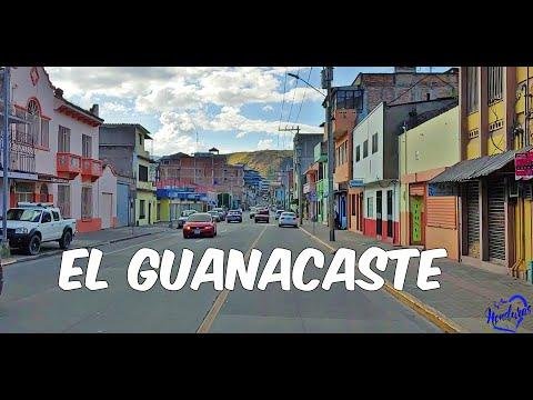 El Guanacaste - Tegucigalpa
