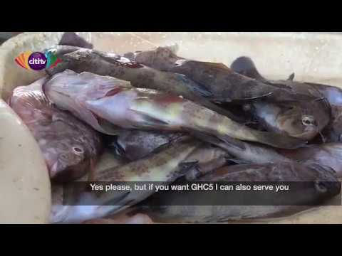 Good Buy: Fish Traders At Tema Fishing Harbor Talk About How Much They Sell Their Fish