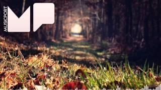 Matt Miller - Gravel Pit (Flume Remix)