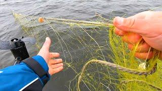 Искали рыбу и запутались в браконьерских сетях Или почему женщин нужно брать на рыбалку